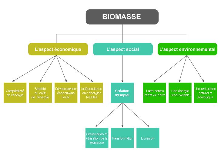 biomasse biomasses. Black Bedroom Furniture Sets. Home Design Ideas