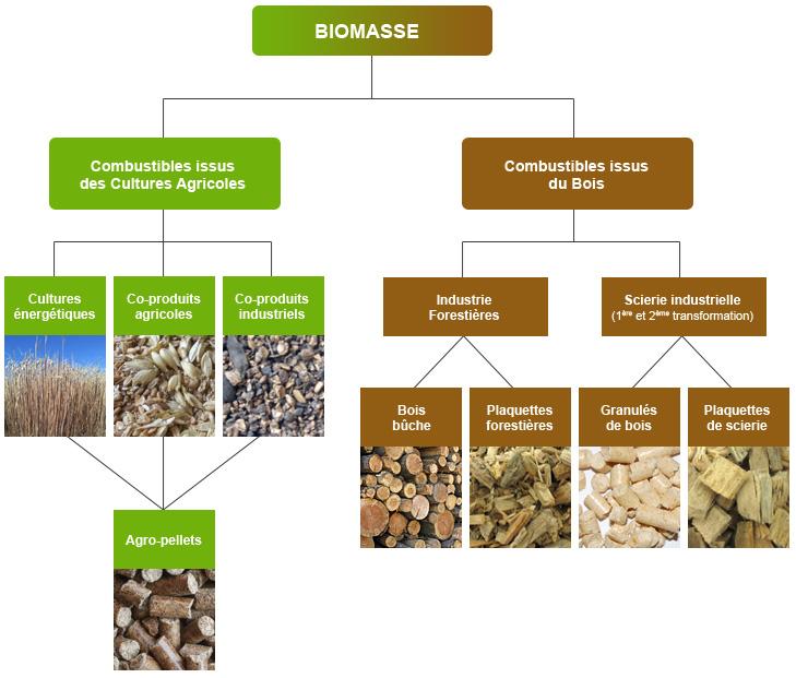 Les combustibles biomasse - RAGT Energie